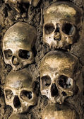 Wall full of skulls and bones — Stock Photo
