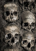 Wall full of skulls and bones — Zdjęcie stockowe