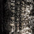 Wall full of skulls and bones — Stock Photo #37414385