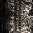 Wall full of skulls and bones — Stock Photo