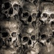 Wall full of skulls and bones — Stock Photo #37562539