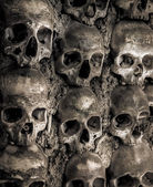 Wall full of skulls and bones — Стоковое фото
