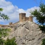 The Genoa fortress — Stock Photo #25895167