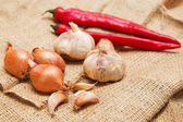 Garlic, onion and red pepper — Stock Photo