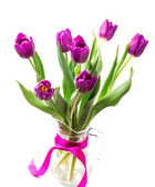 Purple tulips — Stockfoto