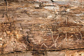 Old dirty wooden texture — Stock Photo
