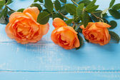 Three roses on the table — Stock Photo