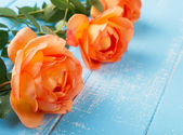 Peach colored roses on the table — Stock Photo