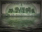 One hundred dollars — Stockfoto