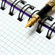 Stock Photo: Fountain Pen on notebook