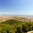 View of Barcelona — Stock Photo #19387609