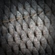 Fish scales — Stockfoto