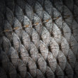 Fish scales — Stock fotografie