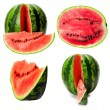 Stock Photo: Watermelon set
