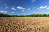 Field plowing — Stock Photo