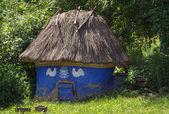 Old house henhouse — Stock Photo