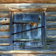 Old wooden window shutter — Stock Photo #29597029