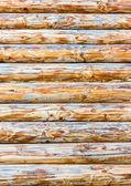 Legno marrone registro — Foto Stock
