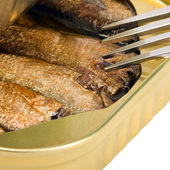 Tinned sprats — Stock Photo
