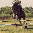 Stock Photo: Horse rider jumps