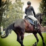 Rider on horse, vintage retro style — Φωτογραφία Αρχείου