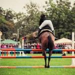 Rider on horse, vintage retro style — Stock Photo #35692833