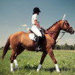 Rider on horse, vintage retro style — Stock Photo #35692881