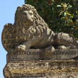 Lion Statue — Stock Photo #38409443