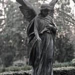 Statue angel — Stock Photo #38674341