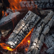 Stock Photo: Fire firewood heater