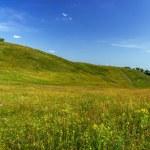 Green hills — Stock Photo #39630285