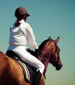 馬と騎手 — ストック写真