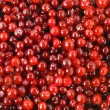 Background berry — Stock Photo
