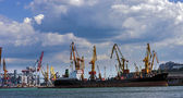 Cargo sea port — Stock Photo