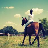 Cheval et cavalier — Photo