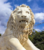 Sculpture lion — Stock Photo