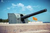 Gun on fortresses — Stock Photo