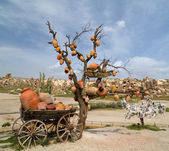 Ceramic jugs Cappadocia, Turkey — Stock Photo