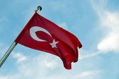 Texture turco — Foto Stock