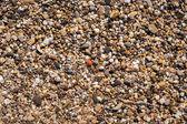 海石背景 — 图库照片