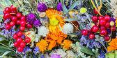 Kwiaty tło — Zdjęcie stockowe