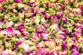 Dry roses petal — Stock Photo