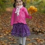 Adorable girl in autumn park — Stock Photo #14975717