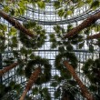 World Financial Center Winter Garden Atrium - Manhattan, New Yor - Stock Photo