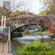 Artist paints in Central Park Manhattan — Stock Photo