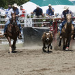Rodeo — Stock Photo #16035613