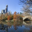 Stock Photo: Central park with new york city skyline