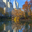 Central park with new york city skyline — Stock Photo