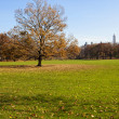 Center Park - Sheeps Medow in fall - Stock Photo