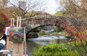 Umělec barvy v central parku manhattan — Stock fotografie
